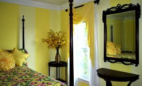 different color walls in living room painting best home design for