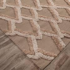 Geometric Area Rug by Modern Geometric Feathers Pattern Wool Area Rug Neutral Tan
