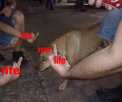 Depressed Drinking Meme - depression memes 2 0 home facebook