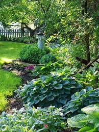 Backyard Or Back Yard by Back Yard Hostas Backyard Shade Gardens And Backyard