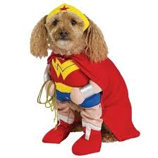 Funny Dog Costumes Halloween 111 Funny Dog Costumes Images Pet Costumes