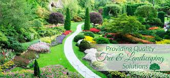 ornamental landscape maintainers calgary ab landscaping solutions
