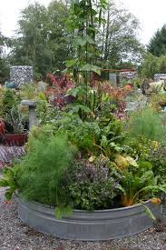 a different spin on the vegetable garden veggies gardens and
