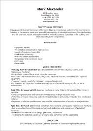 Example Resume For Maintenance Technician Critical Lens Format Essay Essay On Problems Faced By The Youth Of