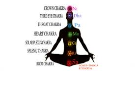 splenic chakra sri vardayni mata rupal what is the swar meditation