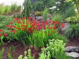 Landscaping Ideas Around Trees What Is A Ring Garden Learn About Shrub And Tree Island Beds