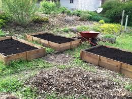 best cedar for raised garden bed 19491940 inspiration 5183