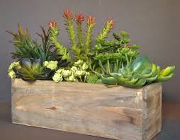 succulent planters most popular cedar wood succulent planter box rustic