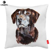 Cool Sofa Pillows by Online Get Cheap Cool Sofa Pillows Aliexpress Com Alibaba Group