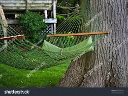 backyard hammock stock photo 49074949 shutterstock