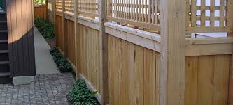 Backyard Borders Fence Me In Planning Materials Design And Maintenance Tips On