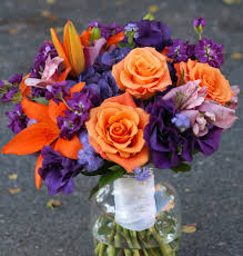 Purple And Orange Color Scheme Petaled October 2014