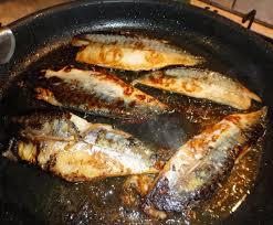 comment cuisiner le maquereau frais filets de maquereaux grillés à la poële ainsi font mes mains