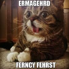 Ermahgerd Animal Memes - image 344285 ermahgerd know your meme