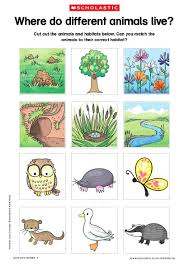 animals and their habitats lessons tes teach