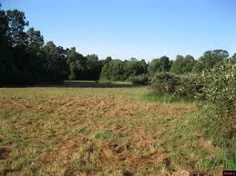 land and lots for sale in mountain home arkansas beaman realty
