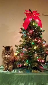 jim shore twelve days of christmas ornaments set of 12 retired