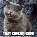 Meme Cheezburger - i can has cheezburger cat meme generator imgflip