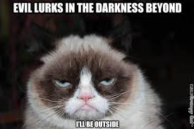 Frowning Meme - grumpy cat simply stacie