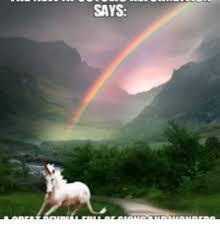 Rainbow Meme - 25 best memes about rainbow dolphin rainbow dolphin memes