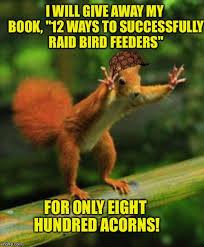Squirrel Meme - red squirrel meme generator imgflip