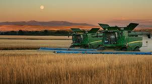 farm table wheat montana
