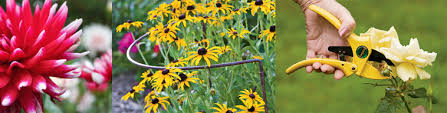 flower gardening resource library from gardener u0027s supply