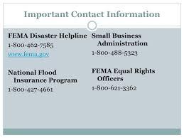 fema help desk phone number federal emergency management agency individuals households