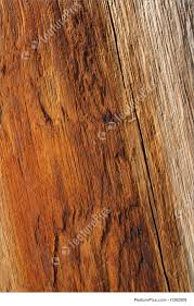 warm orange color texture warm orange color of wood stock picture i1262808 at