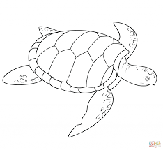sea turtle pattern coloring page animal free pattern of