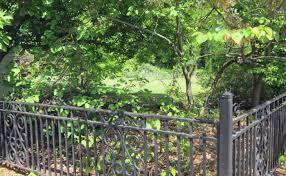 ornament black aluminum fence images stunning eastern ornamental