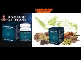 картинки hammer nutrition fuels supplements for endurance