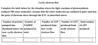 The Light Reactions Of Photosynthesis Use And Produce Complete The Table Below For The Situation Where T Chegg Com