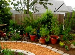 Garden Setup Ideas Garden Simple Landscaping Ideas Decoration Home Architecture And