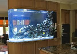 Aquarium Room Divider 600 Gallon Marine Aquarium Room Divider With Faux Reef Aquarium