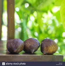 Snake Fruit Tree - salak or snake fruit stock photo royalty free image 81742321 alamy