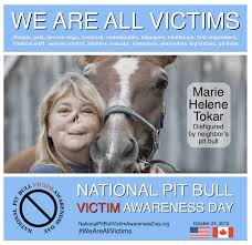 Pitbull Meme - victim album national pit bull victim awareness
