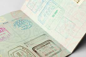 how long does it take to get a brazilian visa travel advice