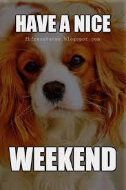 Happy Weekend Meme - the weekend quotes sayings with beautiful weekend images