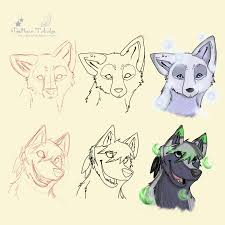 wolf and fox head progression by dragon33 on deviantart