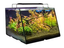aquarium pond u0026 water garden fountain and commercial aquaculture