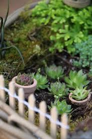 Ideas For A Fairy Garden by A Fairy Garden Tilly U0027s Nest