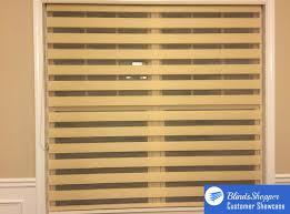 zebra light filtering sheer roller shades blindsshopper com