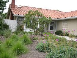 low maintenance drought tolerant landscaping u2014 jbeedesigns outdoor