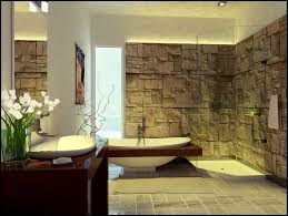 decorating ideas for bathroom walls 224 best bathroom designs images on bathroom designs
