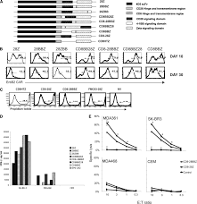 a herceptin based chimeric antigen receptor with modified