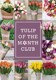 flower subscription tulips monthly stargazer barn
