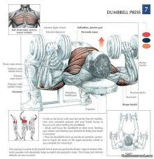 Bench Press Program Chart Chest Workout Complete Detail Chart And Exercises Best Routines