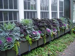 Winter Container Garden Ideas Fall Outdoor Container Gardening Fall Container Gardening Ideas