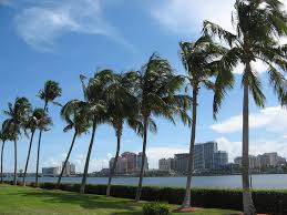 apartments for rent in west palm beach fl hotpads